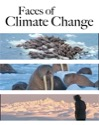 Faces of Climate Change: Disappearing Sea Ice