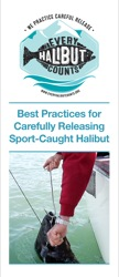 Best Practices for Carefully Releasing Sport-Caught Halibut