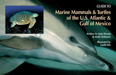 Guide to Marine Mammals and Turtles of the U.S. Atlantic and Gulf of Mexico