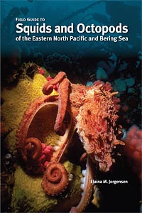 Field Guide to Squids and Octopods of the Eastern North Pacific and Bering Sea