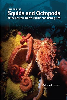 Field Guide to Squids and Octopods of the Eastern North