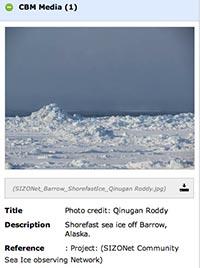 sea ice off Barrow
