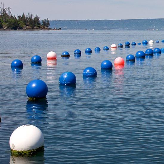 oyster buoys in cove
