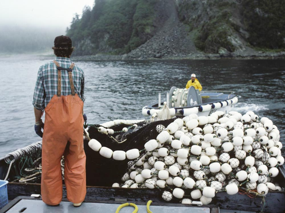 fishermen purse seining