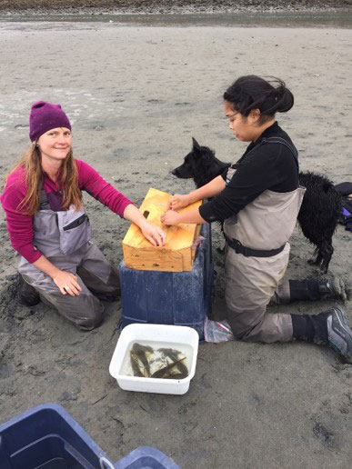 Two researchers measuring and tagging fish on the beach with a black dog