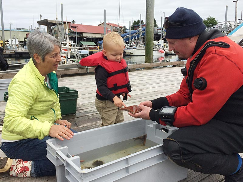 a toddler and adult at a dockside touch tank