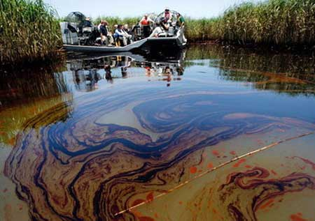 The Effects of the Oil Spill in Alaska